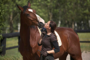 Horse Health and Gut Health